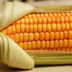 memoir writing, memoir writing contest, corn and chicken soup recipe