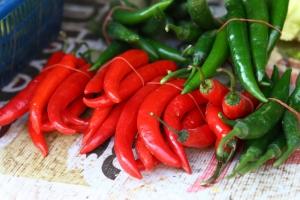 memoir-peppers