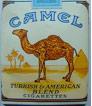 2011-November-Camels