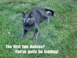 Poor Elizabeth is stuck dancing with Mr. Collins