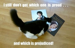 Pamela-Jane-Pride-and-Prejudice-and-Kitties